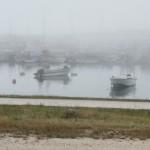 Nazaré: Fischerhafen