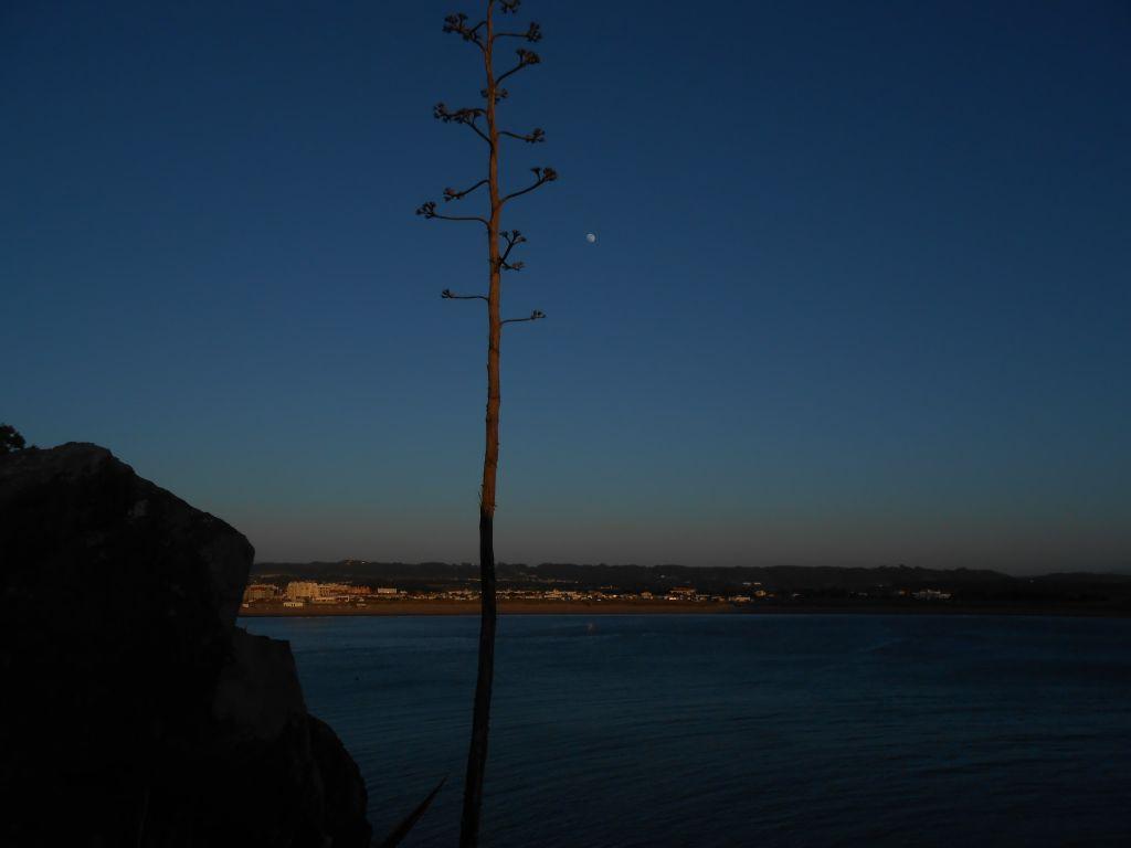 Bucht von Sao Martinho